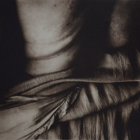 Karen Hymer, From Skins Series (#4), photopolymer gravures printed on rag paper