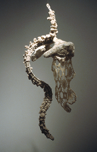 Anne Rowles, Porosity (2005), Cotton thread, wire