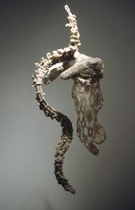 Anne Rowles, Porosity (2005), Cotton thread, wire